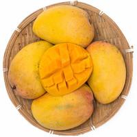 芬果时光 国产新鲜小台芒芒果中大果  3斤装
