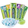 绿箭 无糖薄荷糖4瓶口香糖铁盒润喉口气清新清凉糖果含片零食散装   冰柠薄荷35粒*4