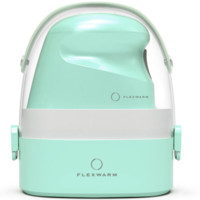 Flexwarm 飞乐思 9903 电熨斗 苹果绿