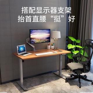 乐歌 电动升降电脑桌站立式台式办公桌书桌折叠桌书法桌电脑笔记本升降台显示器支架简约家用写字桌E2标准白