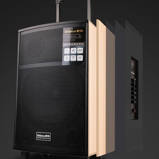 Shinco 新科 XL-12 户外蓝牙音箱 黑色(双金属话筒)
