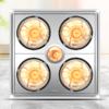 DELIXI 德力西 DGY-H01 多功能取暖灯 传统吊顶灯暖