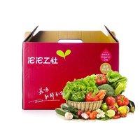 沱沱工社 有机蔬菜礼盒 约5kg 节日礼盒  新鲜蔬菜