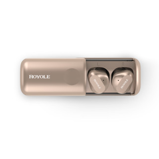柔宇royole降噪真无线蓝牙耳机入耳式迷你 运动音乐蓝牙5.0 立体声 安卓苹果通用 高清通话耳机 金色