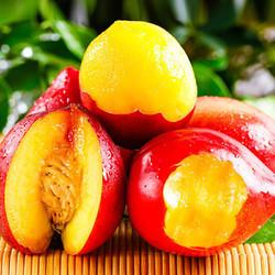 九富九贵  大连黄心油桃 3斤大果约18-24个
