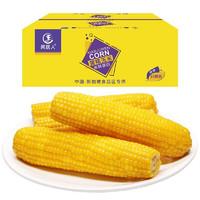 黄糯玉米10根装约2KG