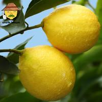 uncle lemon 安岳 新鲜黄柠檬  10个