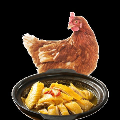 买一送一大用三黄鸡整只土鸡 约900g/只