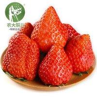PLUS会员:农大腕儿 丹东99草莓 净重2.7斤(约40颗)