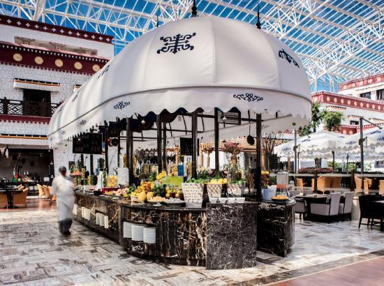 近拉萨河!拉萨圣地天堂洲际大饭店 含氧高级双床房2晚(含早餐+客房弥散供氧+氧气瓶)