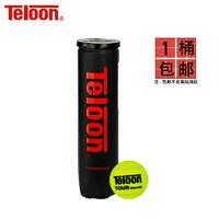 Teloon 天龙 603 耐磨袋装网球