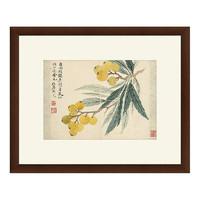 雅昌  雅昌 恽寿平《枇杷图 》茶褐色 古典中式国画 59×48cm 宣纸