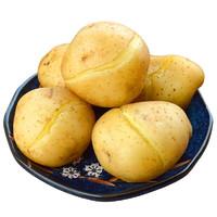 滇派  高山土豆 2500g