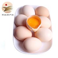 PLUS会员:静益乐源  农家土鸡蛋  新鲜鸡蛋 30枚