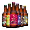 云湃 精酿啤酒组合6口味小麦白啤黑啤精酿IPA果味啤酒国产精酿  品鉴6瓶装(6种口味各1瓶)