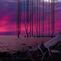 PICA Photo 拾相记 【pica photo】挪威艺术家 奥斯汀·艾斯普隆《上升11号》33*28 50版