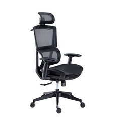 YANXUAN 网易严选  多功能人体工学转椅 小蛮腰新款