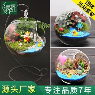 微观苔藓多肉肉迷你植物玻璃微景观盆栽 绿植盆景生态瓶diy材料包