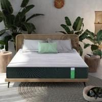 CatzZ 瞌睡猫 绿仙棕 5区静音独袋竹炭环保床垫 180*200*24cm
