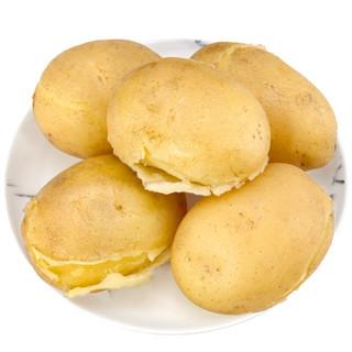云南高山土豆 1500g马铃薯 洋芋 中果 新鲜蔬菜 产地直发包邮