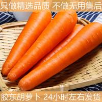 佑嘉木 山东水果胡萝卜新鲜生吃红心红萝卜蔬菜特产10斤应季