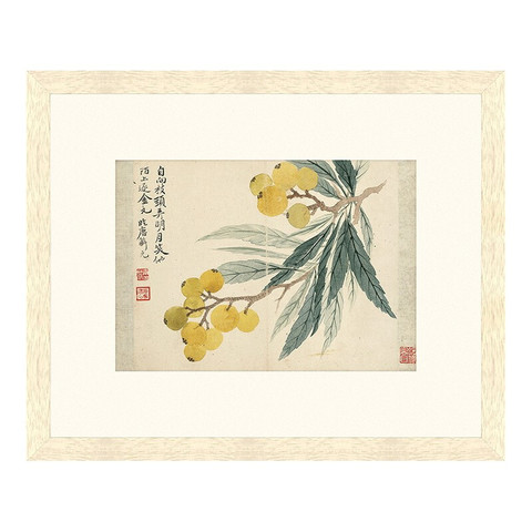 雅昌 恽寿平 古典中式国画《枇杷图 》茶褐色 59×48cm 宣纸