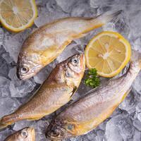 PLUS会员:鲜味时刻  东海小黄鱼   500g