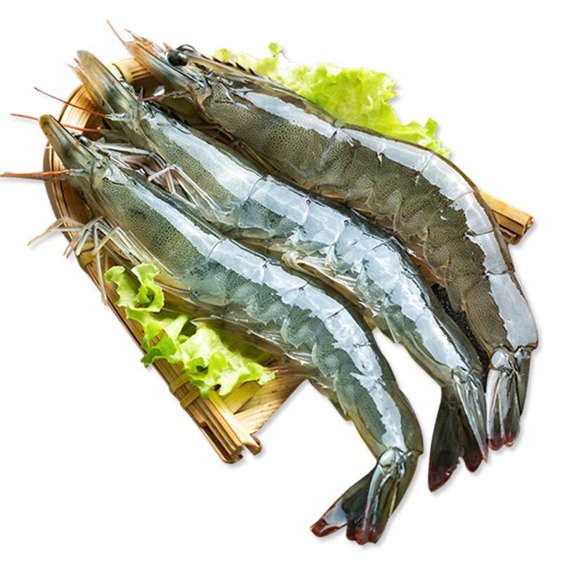 XYXT 虾有虾途 新鲜国产大虾 13-15厘米(净重3.3-3.6斤)