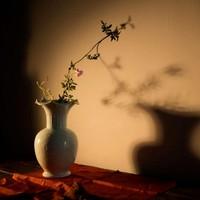 「当代瓷」影青缠枝莲纹花瓶 直径15cm、高28cm 原矿釉