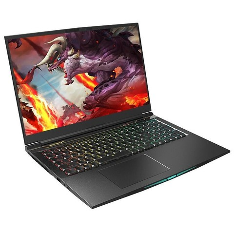 MECHREVO 机械革命 蛟龙7 17.3英寸游戏笔记本电脑(R9-5900HX、16GB、512GB SSD、RTX3070)