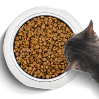 PetMaster 佩玛思特 冰川鳕鱼沙丁鱼成猫猫粮