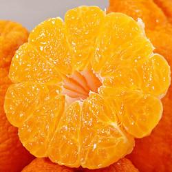 真谷塘 不知火丑橘 精品大果 5斤(直径90mm-110mm)