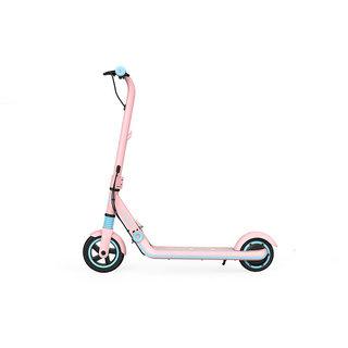 Ninebot 九号 E8 AA.00.0001.38 电动滑板车