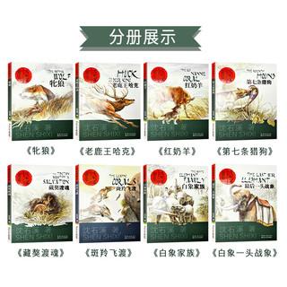 沈石溪动物小说全集画本全套8册正版套装书籍