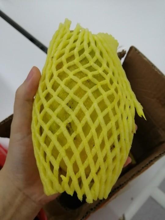 HE YU XIAN 禾语鲜 海南金煌芒果 4.5斤装 单果250-350g