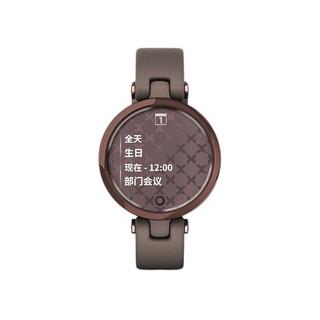 GARMIN 佳明 LILY 活力版 智能手表 34.5mm 午夜罗兰紫 不锈钢 紫色硅胶表带 (心率检测、血氧)
