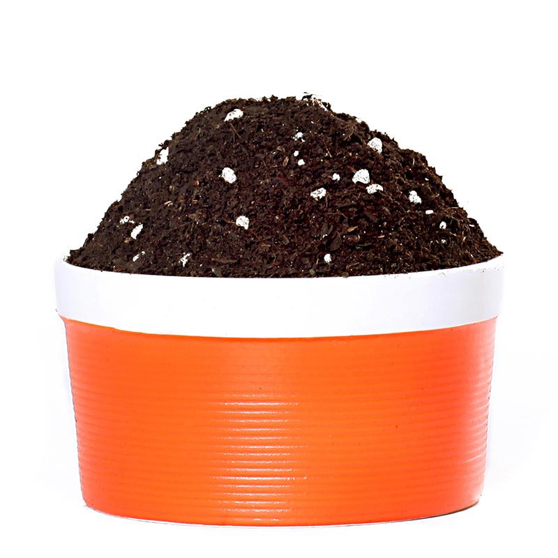 逸高 通用型营养土 9.2斤