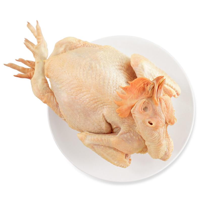 WENS 温氏 三黄鸡800g 农家土鸡慢养走地鸡整只鸡 红烧白切煲汤食材