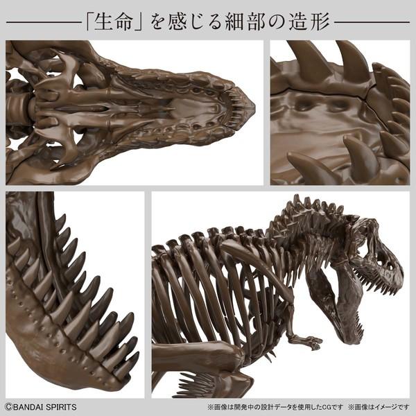 BANDAI 万代 Imaginary Skeleton 霸王龙 1/32 拼装模型