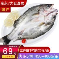 XIANBOHUI 鲜博汇 海鲈鱼 去净450-400g 一条