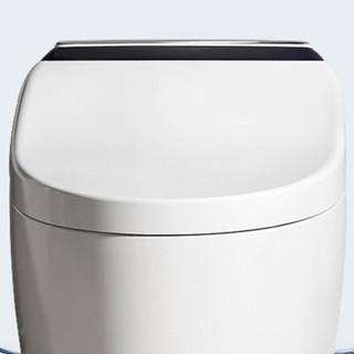 ARROW 箭牌卫浴 AKE1109 储热式智能马桶