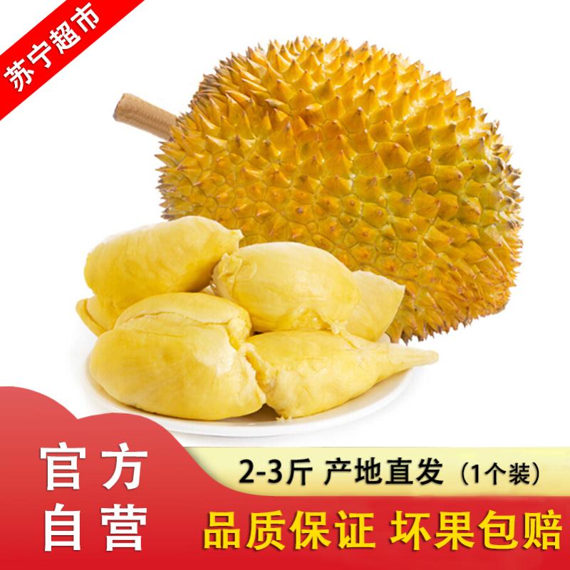嘉琪果果 泰国进口榴莲(1个)2-3斤新鲜水果现摘特产 非金枕