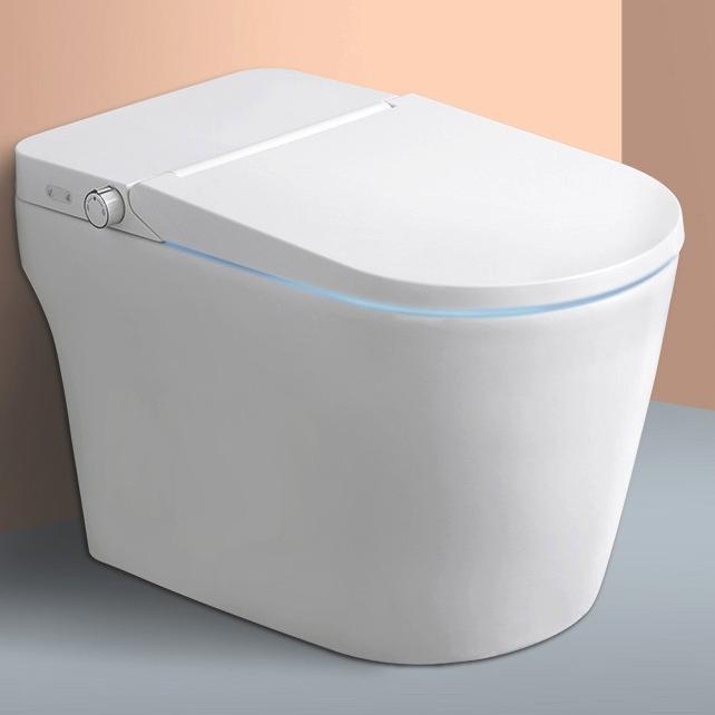 diiib 大白 DXD01001-1031 即热式智能马桶