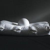 SIDANDA 诗丹娜 95%白鹅羽绒枕 中枕 48*74cm 一只装