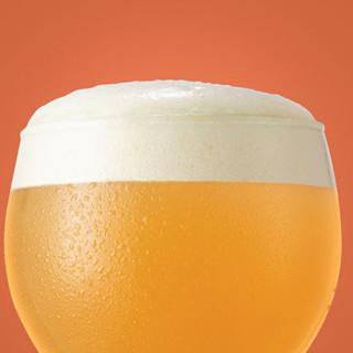 URBRAU 优布劳 幼兽升级款 橙香小麦啤酒 300ml*24瓶