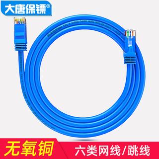 datangbg 大唐保镖 六类网线 千兆网络线CAT6跳线双绞线电脑成品网线无氧铜