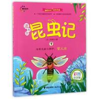 《法布尔昆虫记·会发光的小猎手:萤火虫》(彩图注音版)