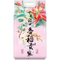 SHI YUE DAO TIAN 十月稻田 香稻贡米 5kg