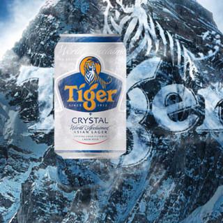 TIGER 虎牌 晶纯啤酒 330ml*24听
