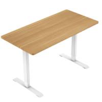 Loctek 乐歌 E2 电竞电动升降桌 标准款 120*60cm